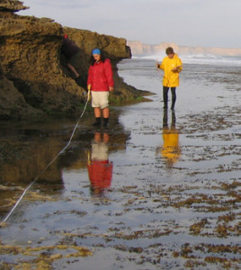 Pictured on the left is a survey of the intertidal zone (Photo by Museum Victoria).