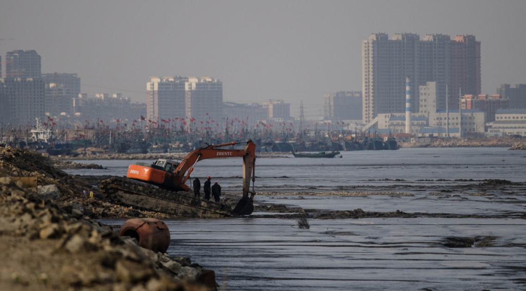 In China alone more than 1.2 million hectares of wetland reclamation has taken place in the last 50 years, perhaps accounting for more than 5% of the worlds' tidal wetlands. (Photo by Nick Murray)