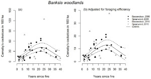 Fig.1. Generalised Additive Model Relationships for the a) predicted number of Carnaby's cockatoos supported in 100 ha of banksia woodland (Y) with time since fire (±95% CI; adjusted r2 = 0.35 for square-root transformed variable), and b) predicted number of Carnaby's cockatoo supported in 100 ha of banksia woodland, adjusted for foraging efficiency (Y*) with time since fire (±95% CI; adjusted r2 = 0.35 for square-root transformed variable). Symbols represent the different combinations of landform type (Bassendean or Spearwood) and year of survey (2008 or 2010). (From Valentine et al 2014.)