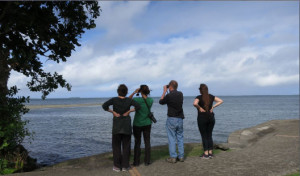 Conservation scientists on the look-out over Oceania.