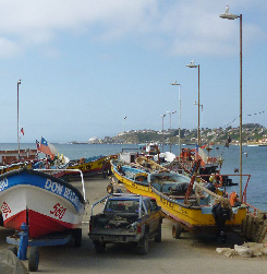 Loco fishing boats on the coast of Chile. Territorial user rights have provided both economic and conservation benefits in these fisheries.