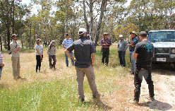 Figure 2. The second scheme visited was an Environmental Stewardship Program site. In this situation, a farmer agrees to remove grazing sheep from a patch of box gum grassy woodland and to not fertilise. The picture above shows workshoppers standing on the woodland site listening to the property's manager explain how it works.