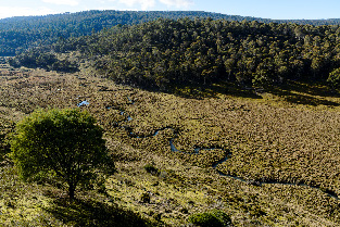 The Serpentine River traversing the Five Rivers Reserve. The Five Rivers Reserve is a protected area that will be managed into perpetuity because of the management endowment of the Tasmanian Land Conservancy. (Photo by Grant Dixon)