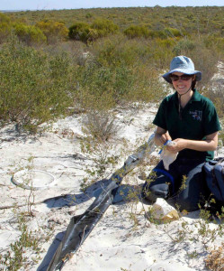 A volunteer with a pit-fall trap to catch reptiles wandering through the mallee. The data set for this study included 4,796 individual reptiles collected during 32,246 trap nights. Volunteers were vital to the data collection. (Photo by Jana Bradley)