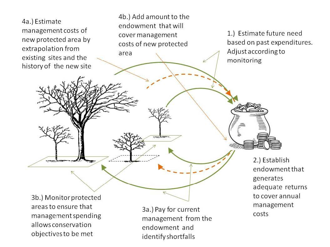 Figure 1: The Tasmanian Land Conservancy strategy for establishing and maintaining a management endowment fund.