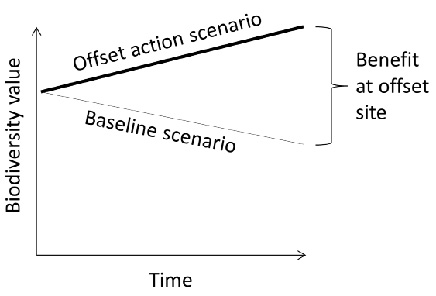 Biodiversity benefit gained at an offset site is the difference between the scenario with the offset action and the baseline scenario (modified from Maron et al. 2013).