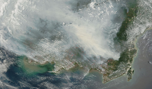 A satellite image of fires burning on cleared and drained peat forests in 2006. (Image by NASA, Jeff Schmaltz, MODIS Rapid Response Team)