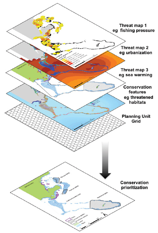 Figure 1: An example of the different maps often used in conservation planning. This example comes from a planning exercise for Marine Protected Areas in Fiji (see Decision Point #79). Traditionally, one or more of these are overlaid with conservation features and used to prioritize areas for conservation. For threat hotspot mapping, the three threat maps might be added together to develop a cumulative threat map that shows highest or lowest values in areas where all three threats are present or absent, respectively. (From Tulloch et al, 2015)