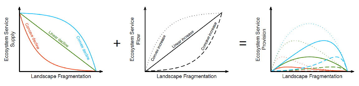 Figure 2: If landscape fragmentation negatively affects service supply (left panel) but positively affect service flow (middle panel), then complex patterns of ecosystem service provision with fragmentation can occur (right panel).