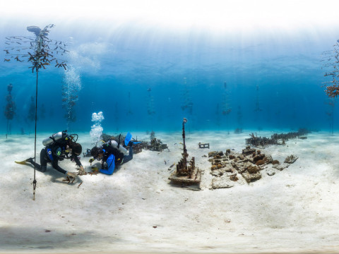 A coral nursery in the Florida Keys. Restoration efforts can get incredibly expensive and even then they can be quite risky. (Photo XL Catlin Seaview Survey)