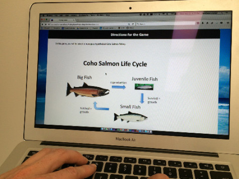 In this game you will be asked to manage a hypothetical Coho salmon fishery.