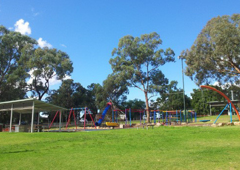 Example of fine-scale vegetation fragmentation (individual trees fragmented by urban development, NSW). (Image http://www.wagga. nsw.gov.au/city-of-wagga-wagga/recreation/lake-albert)