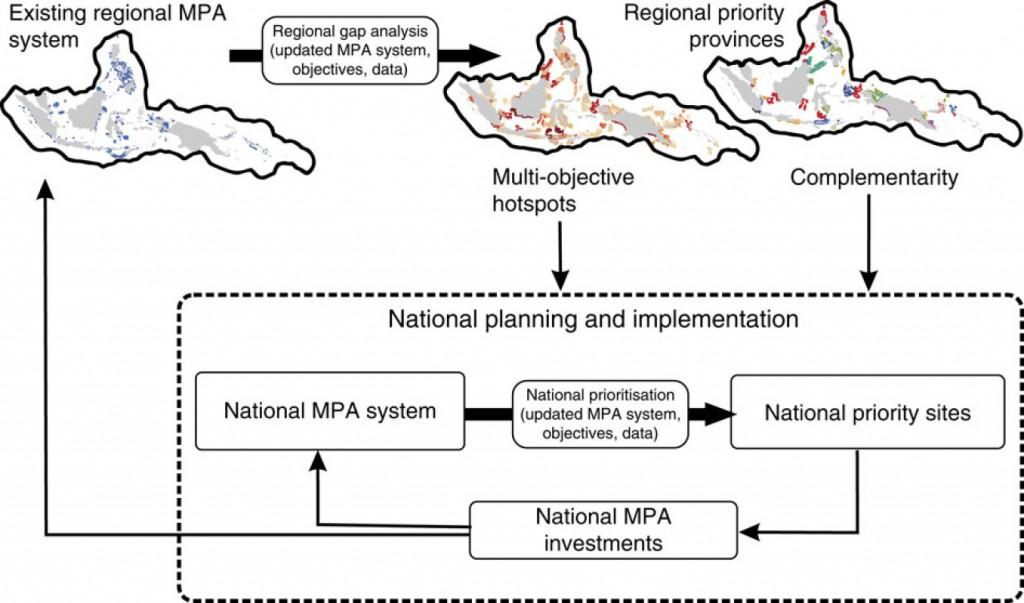 Figure 2: Conceptual diagram of how two strategies of allocating conservation effort can link planning goals at national and regional scales.