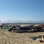 Sustainable fisheries management in Chile