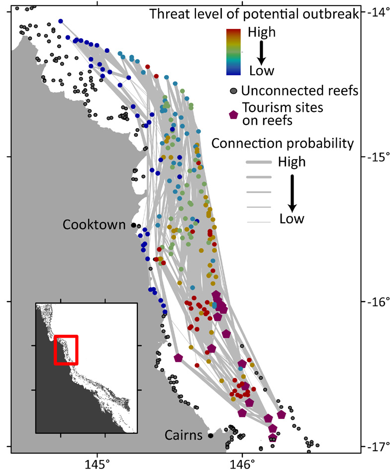 Figure 1: Connectivity patterns indicate the potential of individual reefs to spread COTS larvae towards the major tourism sites in the northern GBR. Geographical proximity of the reefs to tourism sites is not always the best predictor of this potential because of a strongly directional transport of COTS larvae by the ocean currents. Reefs with tourism sites represented as hexagons; other reefs represented as coloured circles according to their predicted potential to spread COTS larvae towards tourism sites; thickness of links indicates the predicted levels of larval transport between reefs. (Reprinted with permission from Hock et al, 2016).