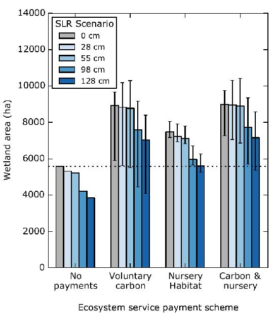 Figure 2: The maximum area of wetlands that can be preserved and still 'break-even' ($0 cost) under different sea level rise (SLR) scenarios and payments for ecosystem services. The 'break even' point is where the capitalised revenue from ecosystem service payments exceeds the opportunity cost of expanding the reserve network. 'No payments' refers to the baseline case where there are no payments for any ecosystem services.