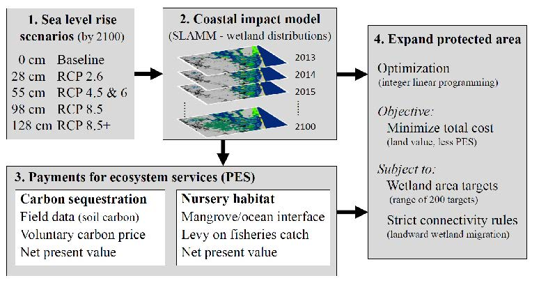 Figure 1: The methodology used to expand the reserve network under a range of sea level rise scenarios and potential payments for ecosystem services.