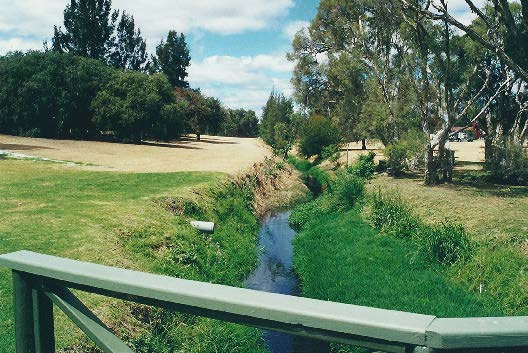Bannister Creek before the restoration (November 2000). (Photograph courtesy of SE Regional Centre for Urban Landcare.)