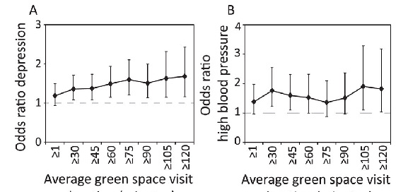 Figure 1: The dose-response graphs here show the likelihood (or 'odds ratio') an individual has A) depression, or B) high blood pressure given incrementally increasing the average duration of a vist to a green space (95% confidence intervals are shown). An odds ratio above one indicates an individual is more likely to have the illness where the threshold of green space visitation is not met.