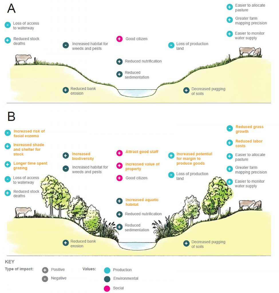 "Figure 2: The pros and cons of fenced-only grass strip riparian margins (Panel A) and fenced and riparian margins (Panel B) as identified by Taranaki ring plain dairy farmers. Individual attributes of riparian margins can contribute values across the board, for example, a well managed farm attracts better staff which is shown here as a social value, but also ultimately contributes to productivity of the farm and ""more milk in the vat""."