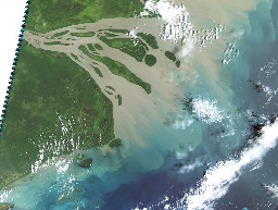 Protecting coral reefs requires careful consideration of what's happening on the adjacent land. Heavy degradation of freshwater and marine ecosystems can occur due to runoff and erosion from land-based activities. Planning marine reserves is pointless if development is likely to occur and ridge-to-reef processes are ignored. Pictured above is a satellite image of run-off from the PNG coastline. (Image CC, Eric Lawrey, NASA).