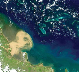 A satellite image of the Burdekin River flood plume in 2008 spreading from the coast out into the Great Barrier Reef lagoon. When prioritising investments, incorporating the connections between land and sea is important. (Image by NASA)