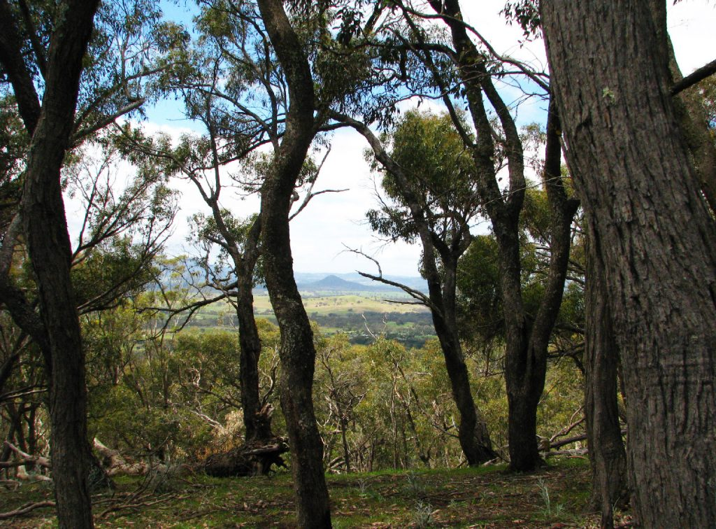 Much private land holds considerable conservation value. Purchasing land and locking it up in a reserve is an expensive option. Encouraging owners to sign up to conservation contracts can be more cost effective. Revolving funds provide a unique, self-replenishing approach to make this happen. (Photo by Mat Hardy)