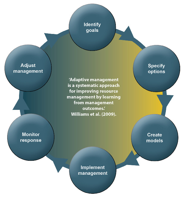 "A clear and succinct definition of adaptive management can be found in a guide on the topic published by the US Government (Williams et al. (2009)): ""Adaptive management is a systematic approach for improving resource management by learning from management outcomes."" 'Learning' is important but in a decision framing that importance is determined by how much it improves the decisions we make. It is never undertaken for its own sake."