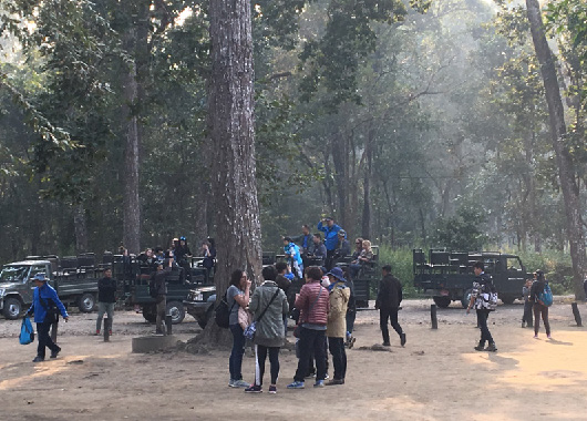 Visitors to Chitwan National Park were surveyed on their 'willingness-topay' to enter the iconic national park. (Photo by Ram Pandit)