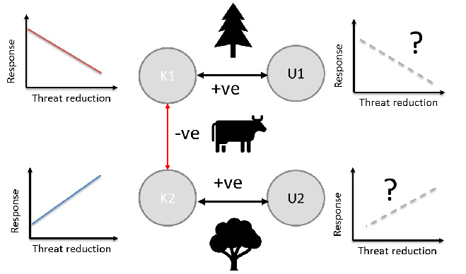 Figure 2: Adding information to the co-occurrence network on how 'known' species might respond to threat management can help understand how 'unknown' species might also respond.