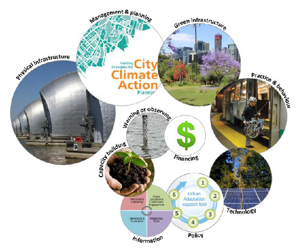 Figure 1: Examples of city climate-adaptation action themes. The size of the circle is proportional to the number of actions listed in the 80 city plans analysed, for each of the ten categories, from largest to smallest: physical infrastructure (73 actions); management and planning (62); green infrastructure (57); practice and behaviour (55); technology (52); policy (49); information (45); capacity building (40); warning or observing (22); financing (20). (From Butt et al. 2018)