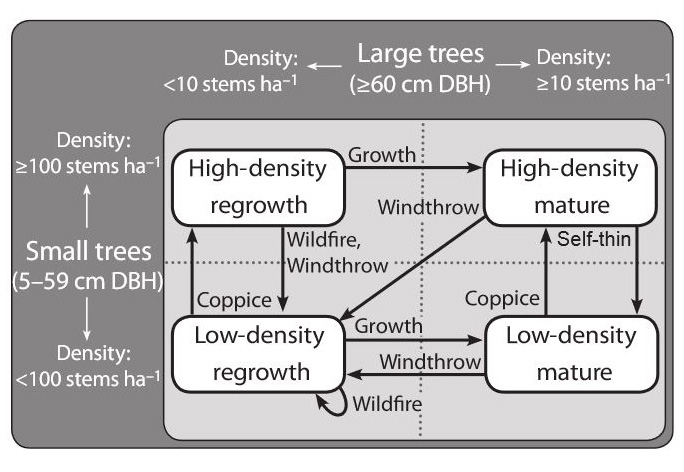 Figure 1: The four vegetation states used in the state-and-transition simulation models used to understand the box-ironbark forests. (From Czembor, 2011).