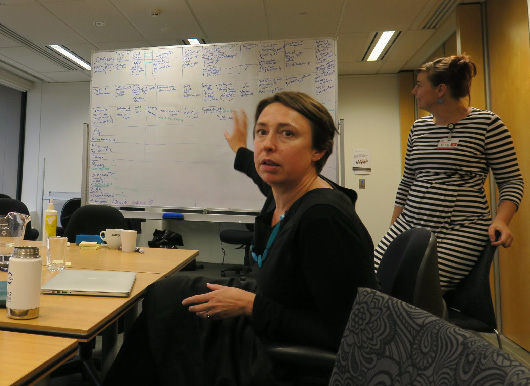 Following the Boden Conference a two day workshop was run exploring the information, insights and commonalities coming out to the conference, and how these might feed into a range of communication products. Long time CEED associate Emily Nicholson is pictured here commenting on a matrix of collapsed ecosystems.