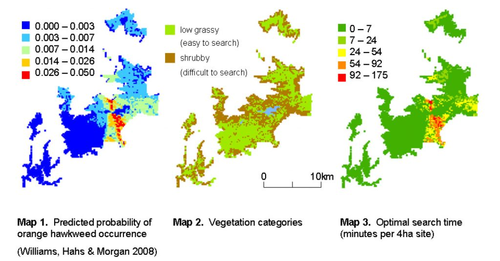 Figure 1: Modelling effective control of an invasive weed is more than just knowing where it occurs. It's also about cost-effectively detecting it. (From Hauser & McCarthy 2009)
